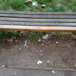 Nepořádek v parku