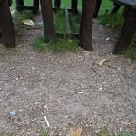 Nepořádek u atrakcí v parku